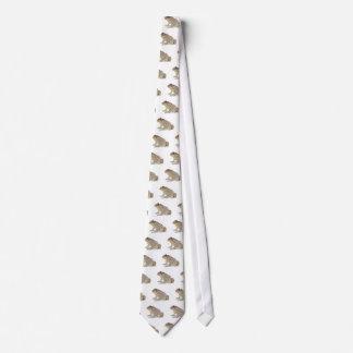 Cravates Crapaud