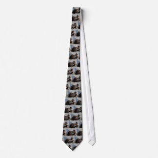 Cravates Deux babouins de gelada (gelada de Theropithecus)