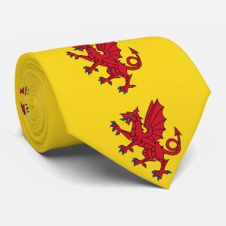 Cravates Drapeau de Somerset
