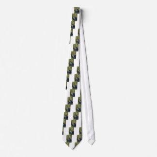 Cravates La crique inférieure de butte tombe plongeant dans