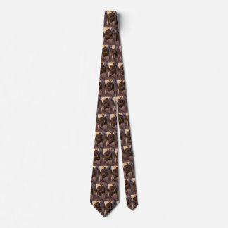 Cravates Les cowboys vintages, supportent dans le canyon