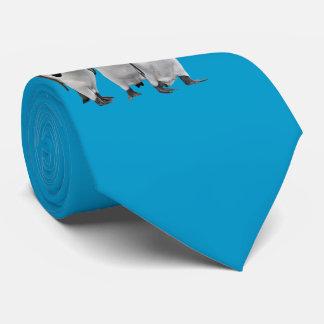Cravates Les trois Rois Tie Double Sided (turquoise)