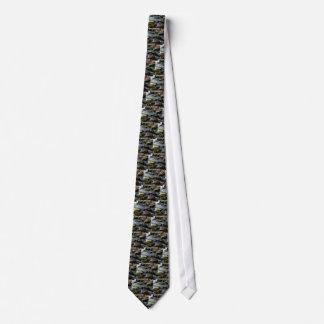 Cravates mousse dans The Creek