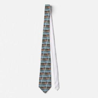 Cravates Nuit à la grange