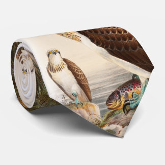 Cravates Oiseaux de John Gould de faucon de mer de