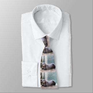 Cravates Otterly mignon