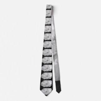 Cravates Pavot cultivé