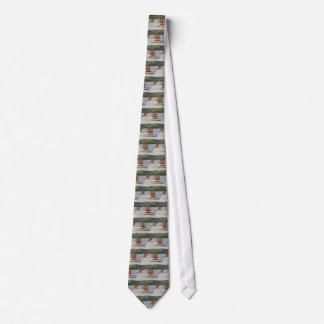 Cravates Pilier de baie de canard, Loch Lomond, Ecosse