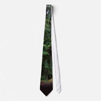 Cravates Promenade de forêt