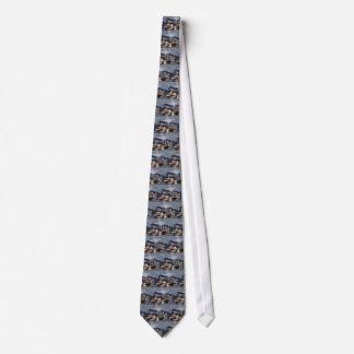 Cravates Régate de vapeur sur le fleuve Mississippi