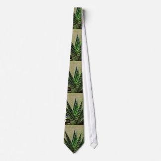 "Cravates Succulent de Variegata de ""alligator"" d'aloès"
