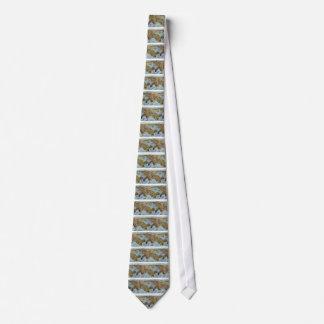 Cravates Sydney 1888