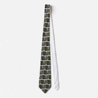 Cravates Tumalo tombe plan rapproché