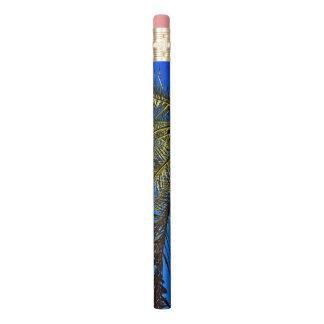 Crayon Palmier-dattier