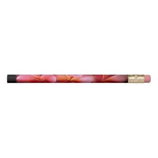 Crayon rose d'arrière - plan de noir de fleur