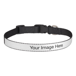 Créez votre propre collier de chien moyen