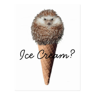 Crème glacée de hérisson carte postale