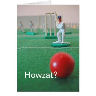 Cricket 'Howzat ? ' Cartes