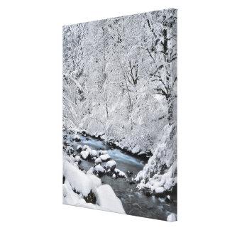 Crique de blanc de Milou pittoresque, Orégon Toile
