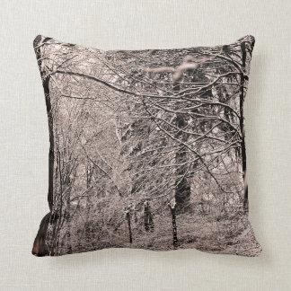 Crique d'hiver et coussin de forêt d'hiver