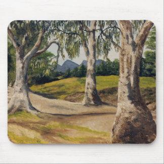 Crique et gumtrees secs dans le Flinders Tapis De Souris