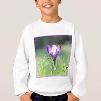 Crocus pourpre au printemps 03,3 sweatshirt