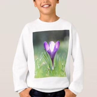Crocus pourpre au printemps sweatshirt