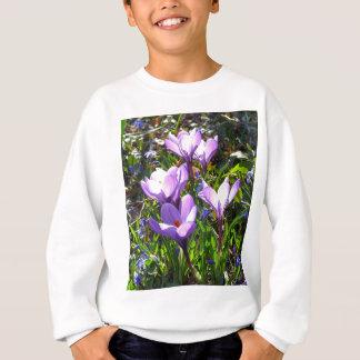 Crocus violets 02,0, salutations de ressort sweatshirt
