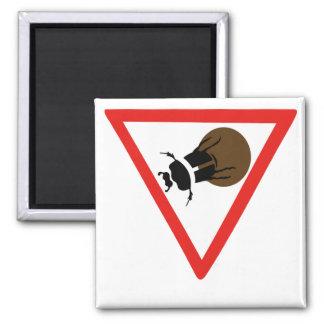 Croisement de scarabée de Dung, poteau de Aimant