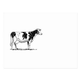 Croquis de crayon de conception de vache carte postale