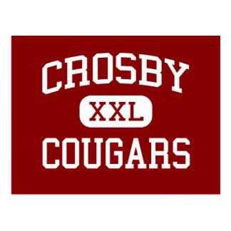Crosby - pumas - collège - Crosby le Texas Carte Postale