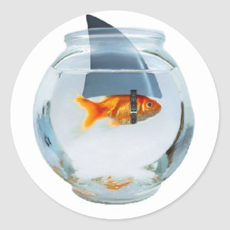 Croyez en vous-même les poissons sticker rond