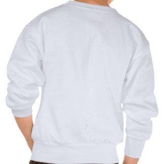 Cru de mur de briques d'Ann Arbor Michigan Vernor Sweat-shirt