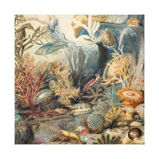 Cru sous la copie de toile de la mer |