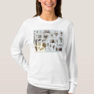 Crustacés et arachnides t-shirt
