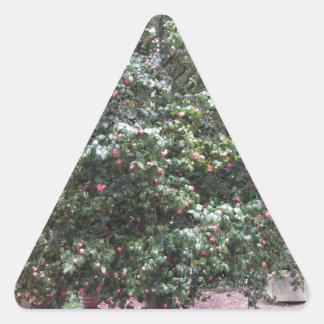 Cultivar antique de fleur de cognassier du Japon Sticker Triangulaire