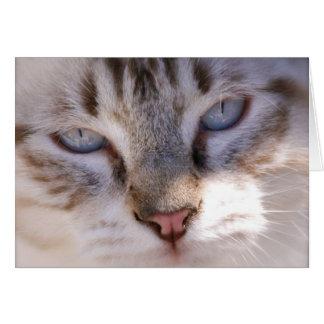 Customisez votre propre carte d'animal familier