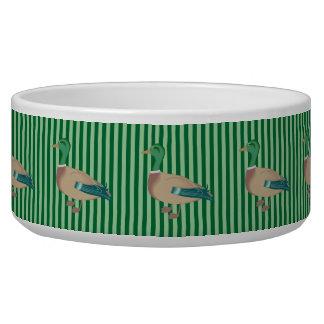 Cuvette rayée verte de chien de canard écuelle
