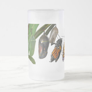CYCLE DE VIE DE MONARQUE FROSTED GLASS BEER MUG