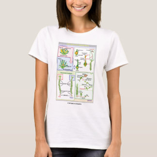 Cycle de vie d'une mousse typique (Bryophyte) T-shirt