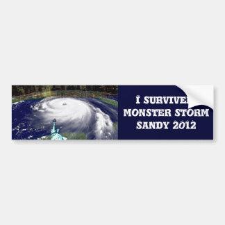 Cyclone superbe Sandy 2012, oeil du storm_ Autocollant Pour Voiture