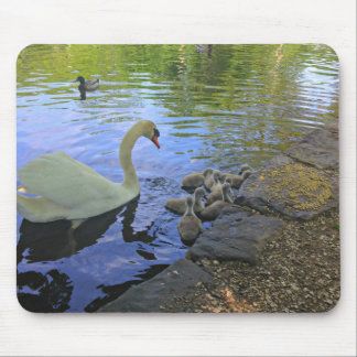 Cygne de mère avec des bébés à l'étang tapis de souris