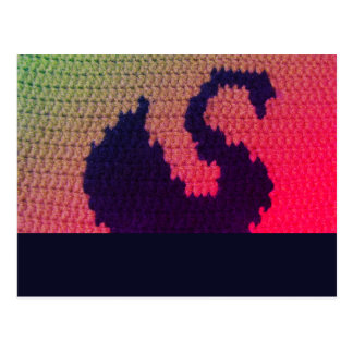 Cygne noir nageant la carte postale lumineuse