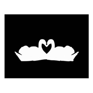 Cygnes noirs et blancs d'amour carte postale