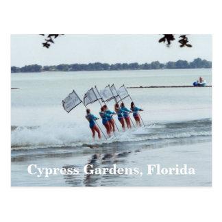 Cypress fait du jardinage carte postale de ski
