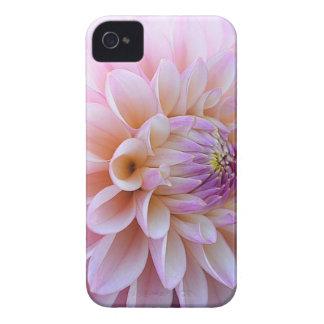 Dahlia Hued en pastel Coque iPhone 4