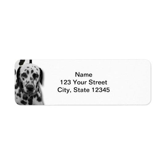 Dalmate pointillé noir et blanc étiquettes d'adresse retour