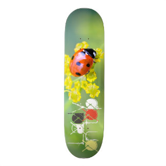 dame sur le dessus skateboards personnalisés