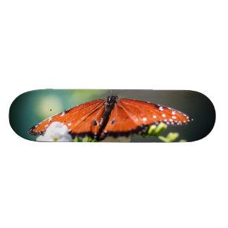 Danaus Gilippus de la Reine Skateboards Personnalisables