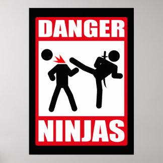 Danger Ninjas Posters